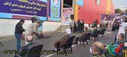 افتتاح مجتمع بیمارستانی و نقاهتگاه ۲هزار تختخوابی «نزاجا»