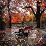 تدابیر و مزاج فصل پاییز